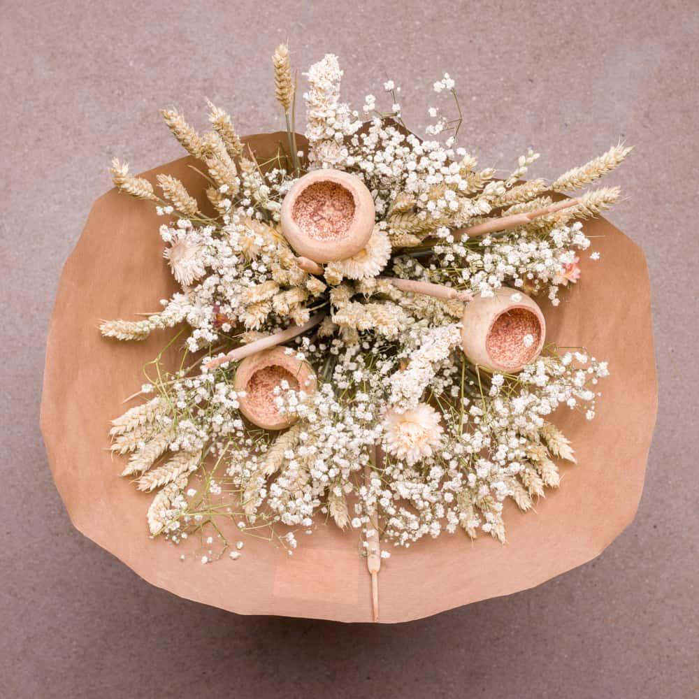 lamboo product photo-3